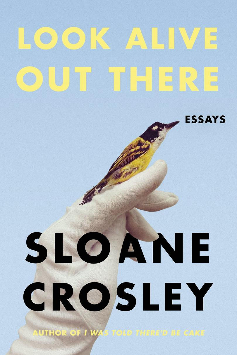 Katso Alive Out There: Essays by Sloane Crosley