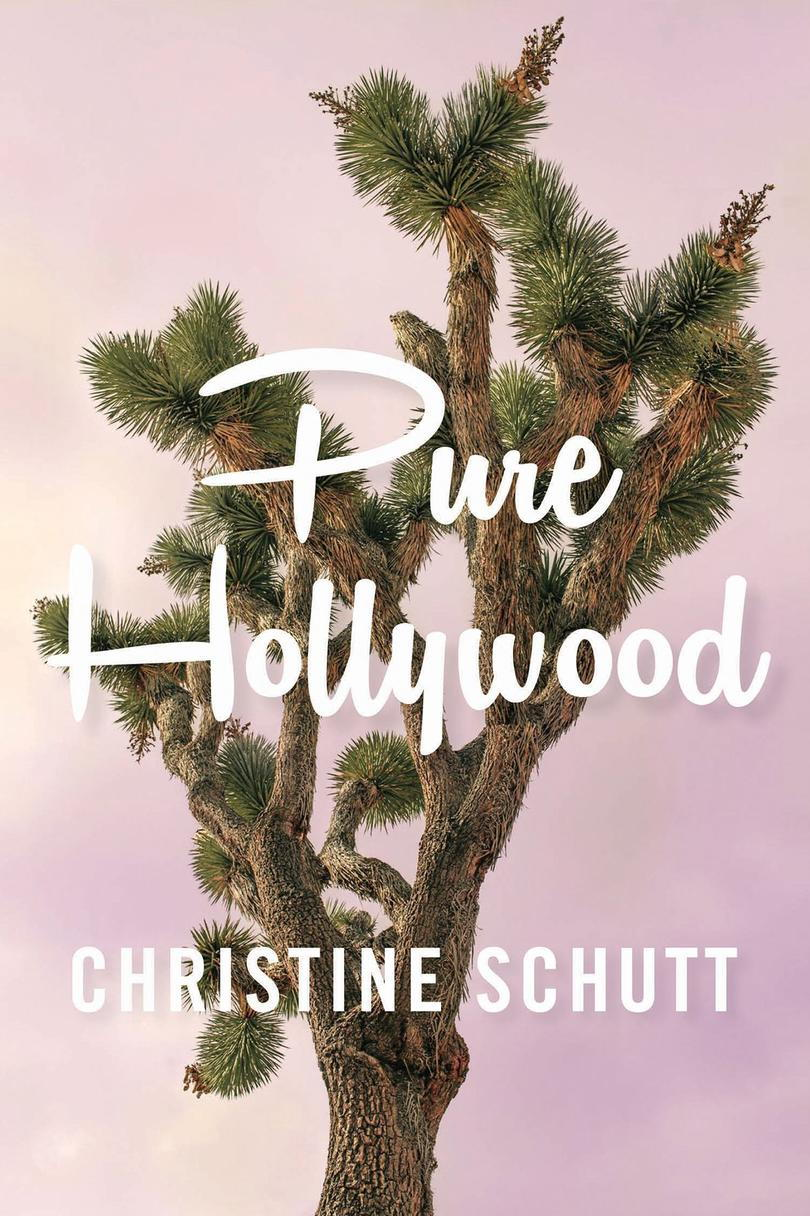 Puhdas Hollywood: and Other Stories by Christine Schutt